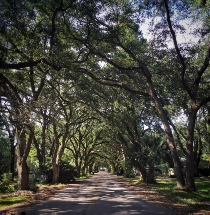 Historic town of Apalachicola