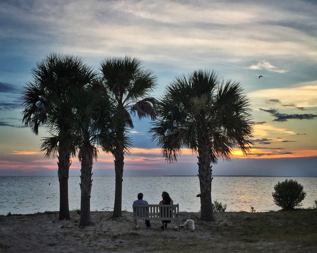 Perfect spot for sunset on St George Island