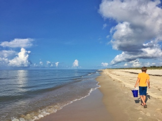 Miles of undeveloped beaches at St George Island State Park