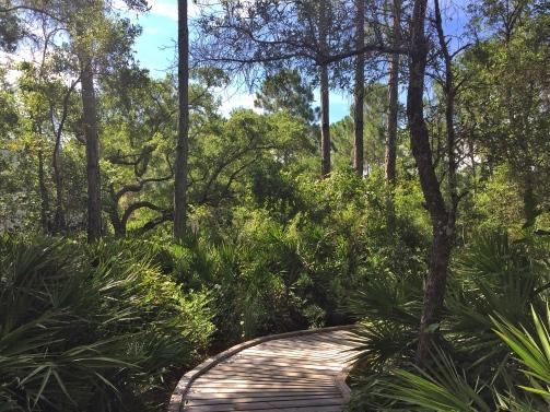 Apalachicola National Estuarine Research Reserve
