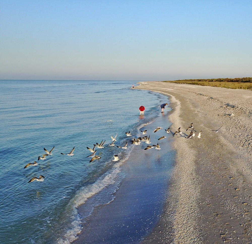 Sanibel Beach: 10 Reasons To Visit Sanibel Island, Florida